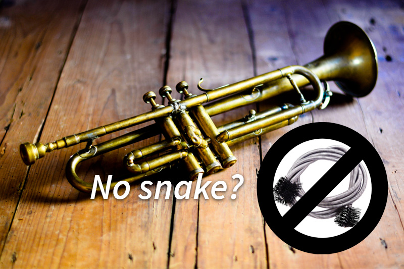Clean Trumpet without snake