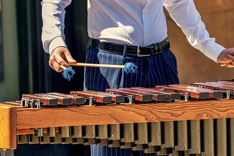 xylophone cleaners