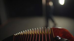 accordion cleaning
