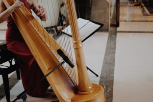 harpist in red playing